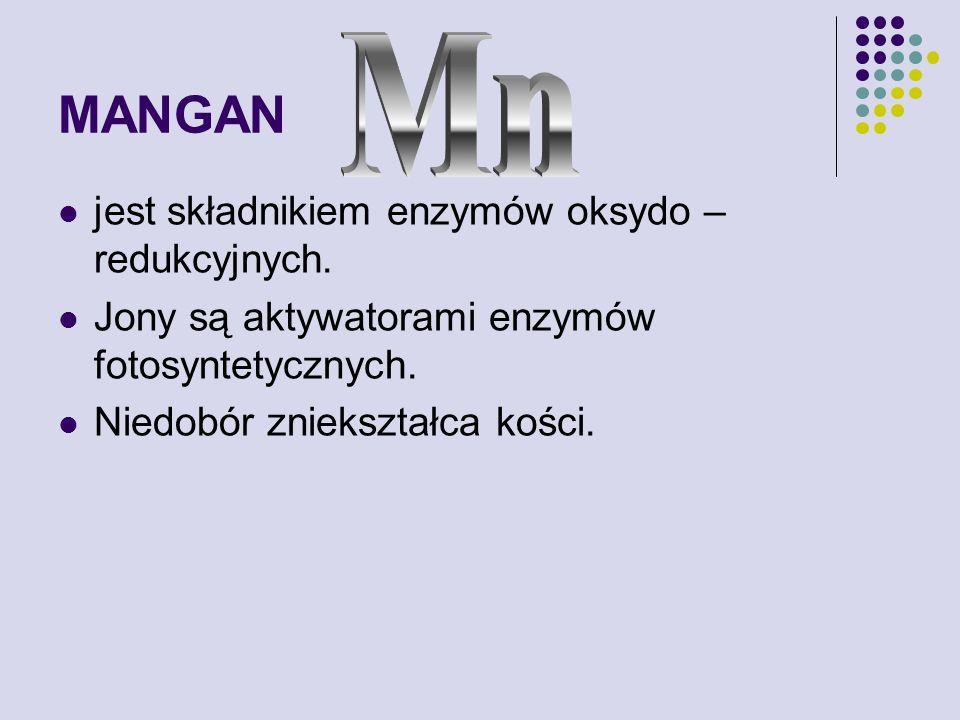 MANGAN jest składnikiem enzymów oksydo – redukcyjnych.