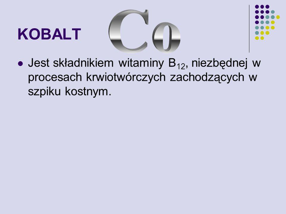 KOBALT Jest składnikiem witaminy B 12, niezbędnej w procesach krwiotwórczych zachodzących w szpiku kostnym.