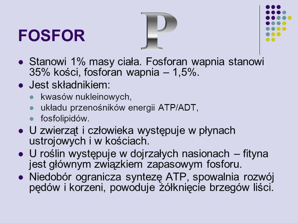 FOSFOR Stanowi 1% masy ciała.Fosforan wapnia stanowi 35% kości, fosforan wapnia – 1,5%.