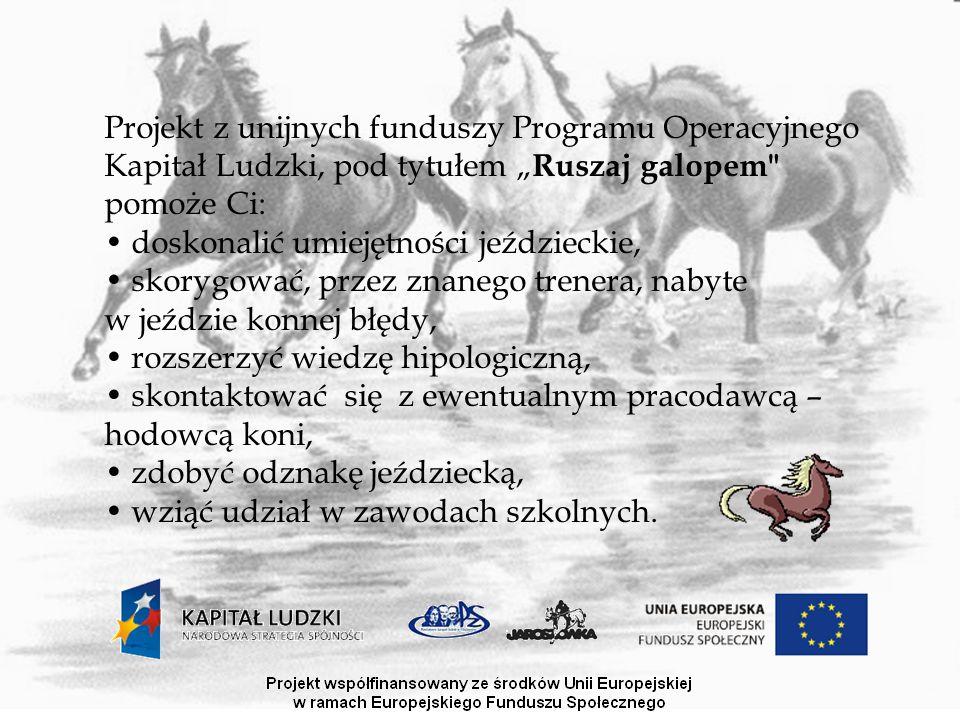 """W projekt zaangażowane są: Stowarzyszenie Pomocy Uczniom PZS w Chojnowie """"Wsparcie , Powiatowy Zespół Szkół w Chojnowie, Stadnina Koni Jaroszówka Szczegółów o możliwości udziału w nim udzielą pod numerami 785242849/47, oraz pod adresem e- mail: ruszajgalopem@onet.euruszajgalopem@onet.eu"""