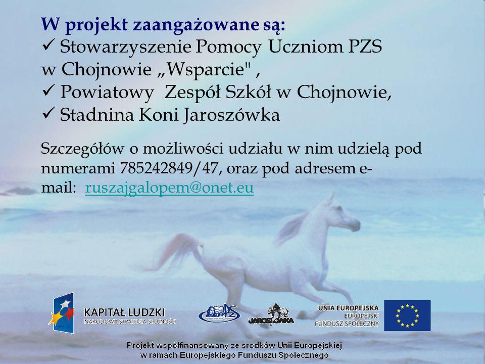 """W projekt zaangażowane są: Stowarzyszenie Pomocy Uczniom PZS w Chojnowie """"Wsparcie"""