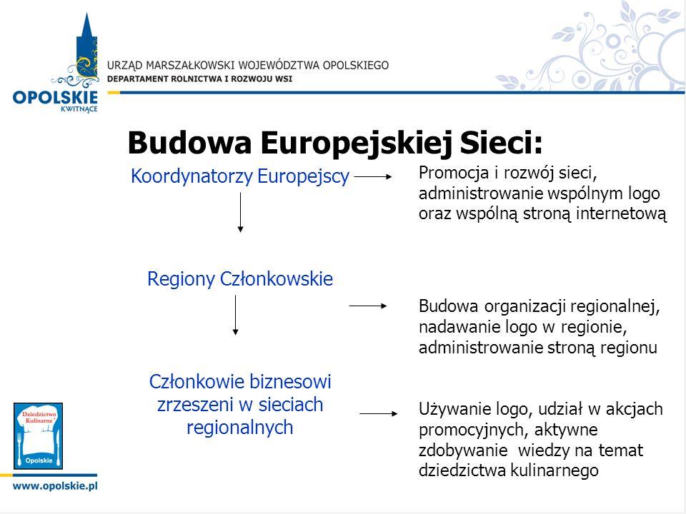Budowa Europejskiej Sieci: Koordynatorzy Europejscy Regiony Członkowskie Członkowie biznesowi zrzeszeni w sieciach regionalnych Promocja i rozwój siec