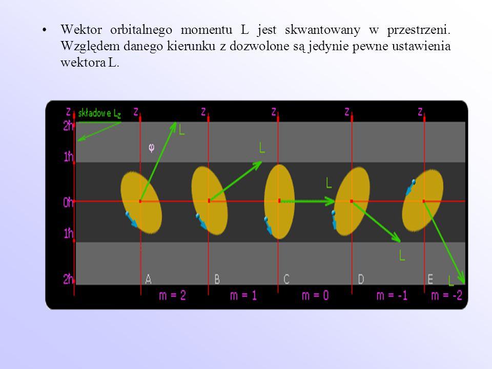 Wektor orbitalnego momentu L jest skwantowany w przestrzeni. Względem danego kierunku z dozwolone są jedynie pewne ustawienia wektora L.