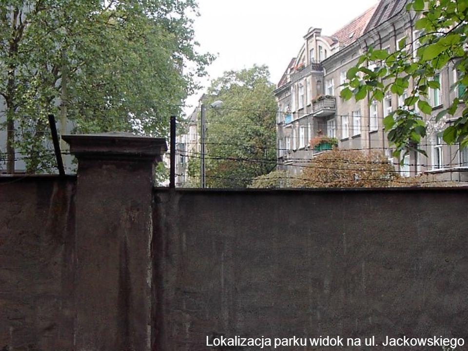 Lokalizacja parku widok na ul. Jackowskiego
