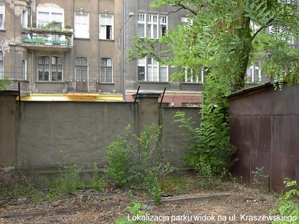 Lokalizacja parku widok na ul. Kraszewskiego i Sienkiewicza