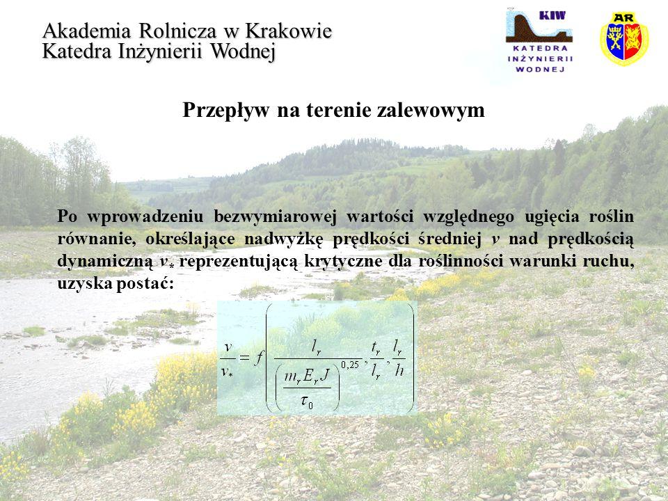 Przepływ na terenie zalewowym Akademia Rolnicza w Krakowie Katedra Inżynierii Wodnej Po wprowadzeniu bezwymiarowej wartości względnego ugięcia roślin