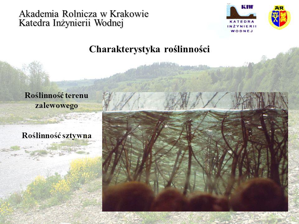 Charakterystyka roślinności Roślinność terenu zalewowego Akademia Rolnicza w Krakowie Katedra Inżynierii Wodnej Schemat oddziaływania