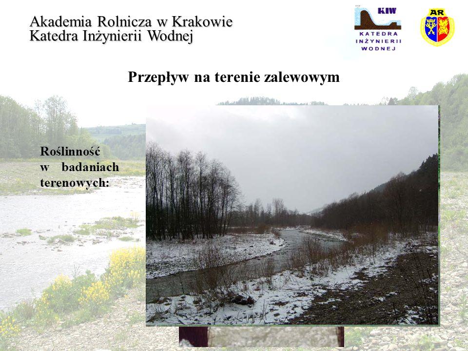 Przepływ na terenie zalewowym Akademia Rolnicza w Krakowie Katedra Inżynierii Wodnej Roślinność w badaniach terenowych: