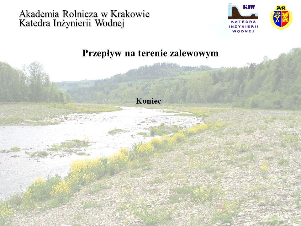 Przepływ na terenie zalewowym Koniec Akademia Rolnicza w Krakowie Katedra Inżynierii Wodnej
