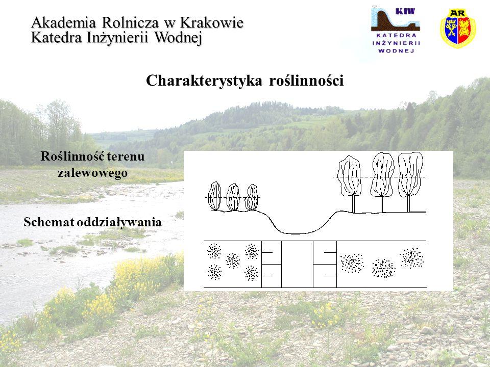 Przepływ na terenie zalewowym Akademia Rolnicza w Krakowie Katedra Inżynierii Wodnej Badania Kouwena określają wartość krytyczną prędkości dynamicznej v *Er, podczas której nastąpi pochylenie zginanej roślinności: oraz krytyczną prędkość dynamiczną zrywania i łamania łodyg: