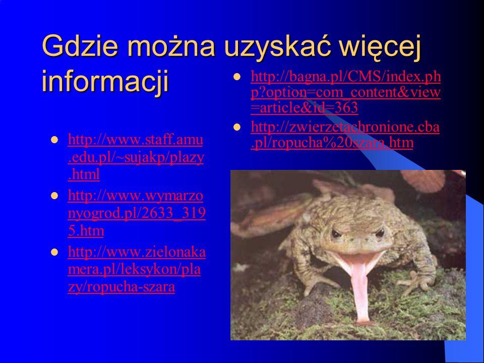 Gdzie można uzyskać więcej informacji http://www.staff.amu.edu.pl/~sujakp/plazy.html http://www.staff.amu.edu.pl/~sujakp/plazy.html http://www.wymarzo nyogrod.pl/2633_319 5.htm http://www.wymarzo nyogrod.pl/2633_319 5.htm http://www.zielonaka mera.pl/leksykon/pla zy/ropucha-szara http://www.zielonaka mera.pl/leksykon/pla zy/ropucha-szara http://bagna.pl/CMS/index.ph p?option=com_content&view =article&id=363 http://bagna.pl/CMS/index.ph p?option=com_content&view =article&id=363 http://zwierzetachronione.cba.pl/ropucha%20szara.htm http://zwierzetachronione.cba.pl/ropucha%20szara.htm