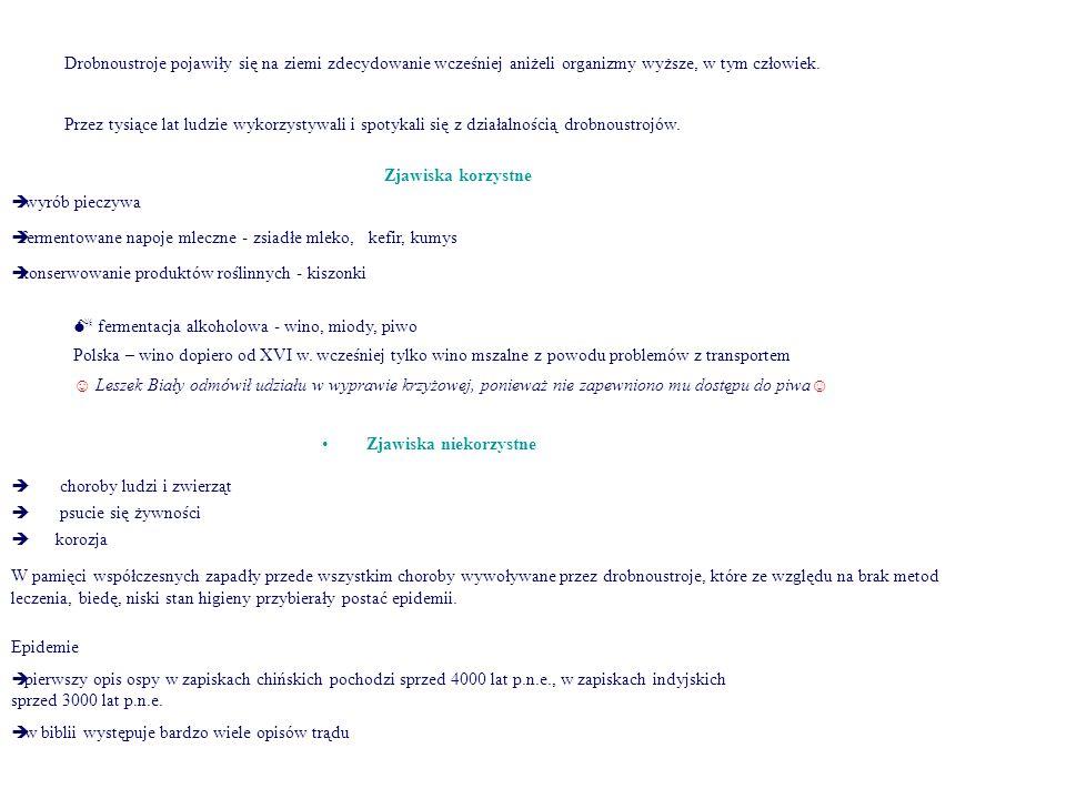 Paciorkowce – chorobotwórczość c.d  Paciorkowce grupy B (S.