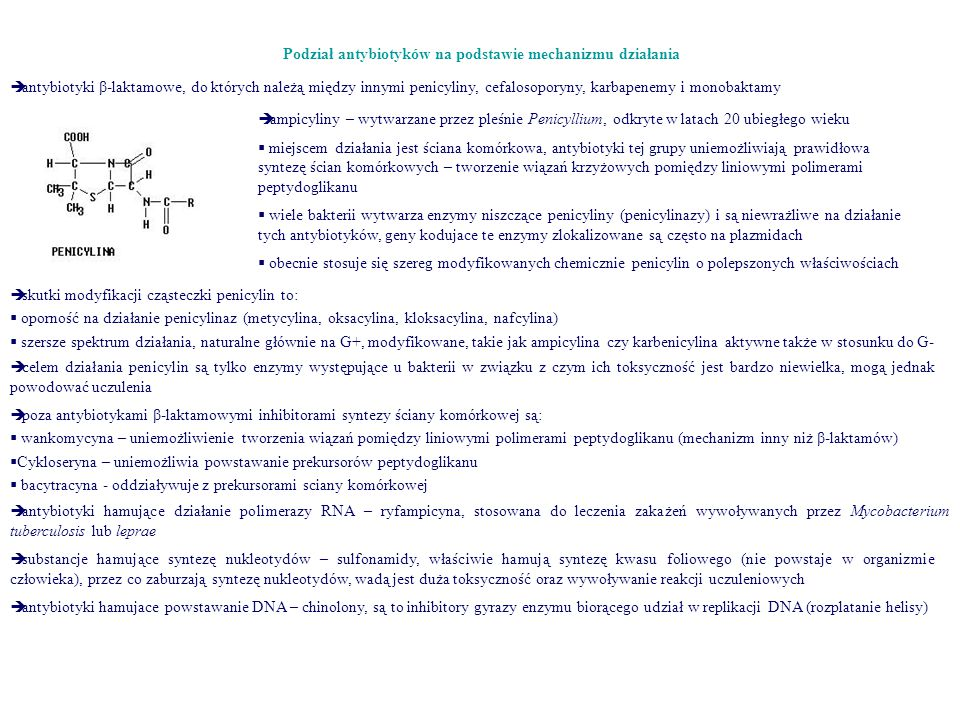 Podział antybiotyków na podstawie mechanizmu działania  antybiotyki β-laktamowe, do których należą między innymi penicyliny, cefalosoporyny, karbapenemy i monobaktamy  ampicyliny – wytwarzane przez pleśnie Penicyllium, odkryte w latach 20 ubiegłego wieku  miejscem działania jest ściana komórkowa, antybiotyki tej grupy uniemożliwiają prawidłowa syntezę ścian komórkowych – tworzenie wiązań krzyżowych pomiędzy liniowymi polimerami peptydoglikanu  wiele bakterii wytwarza enzymy niszczące penicyliny (penicylinazy) i są niewrażliwe na działanie tych antybiotyków, geny kodujace te enzymy zlokalizowane są często na plazmidach  obecnie stosuje się szereg modyfikowanych chemicznie penicylin o polepszonych właściwościach  skutki modyfikacji cząsteczki penicylin to:  oporność na działanie penicylinaz (metycylina, oksacylina, kloksacylina, nafcylina)  szersze spektrum działania, naturalne głównie na G+, modyfikowane, takie jak ampicylina czy karbenicylina aktywne także w stosunku do G-  celem działania penicylin są tylko enzymy występujące u bakterii w związku z czym ich toksyczność jest bardzo niewielka, mogą jednak powodować uczulenia  poza antybiotykami β-laktamowymi inhibitorami syntezy ściany komórkowej są:  wankomycyna – uniemożliwienie tworzenia wiązań pomiędzy liniowymi polimerami peptydoglikanu (mechanizm inny niż β-laktamów)  Cykloseryna – uniemożliwia powstawanie prekursorów peptydoglikanu  bacytracyna - oddziaływuje z prekursorami sciany komórkowej  antybiotyki hamujące działanie polimerazy RNA – ryfampicyna, stosowana do leczenia zakażeń wywoływanych przez Mycobacterium tuberculosis lub leprae  substancje hamujące syntezę nukleotydów – sulfonamidy, właściwie hamują syntezę kwasu foliowego (nie powstaje w organizmie człowieka), przez co zaburzają syntezę nukleotydów, wadą jest duża toksyczność oraz wywoływanie reakcji uczuleniowych  antybiotyki hamujace powstawanie DNA – chinolony, są to inhibitory gyrazy enzymu biorącego udział w replikacji DNA (rozplatanie helisy)