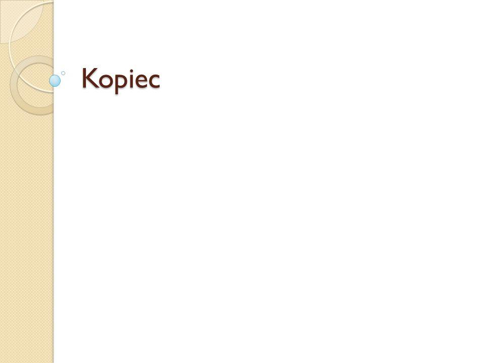 Kopiec