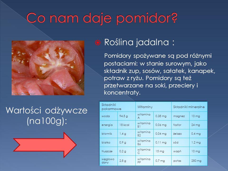  Roślina jadalna : Pomidory spożywane są pod różnymi postaciami: w stanie surowym, jako składnik zup, sosów, sałatek, kanapek, potraw z ryżu.