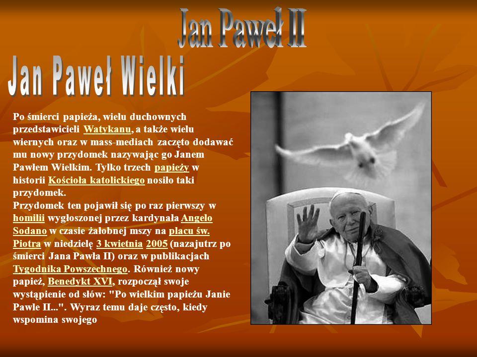Po śmierci papieża, wielu duchownych przedstawicieli Watykanu, a także wielu wiernych oraz w mass-mediach zaczęto dodawać mu nowy przydomek nazywając go Janem Pawłem Wielkim.