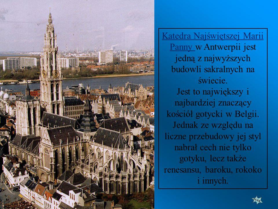 Panorama miasta z katedrą
