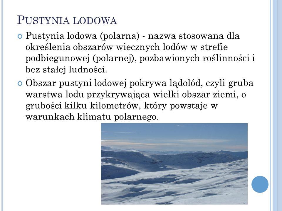 P USTYNIA LODOWA Pustynia lodowa (polarna) - nazwa stosowana dla określenia obszarów wiecznych lodów w strefie podbiegunowej (polarnej), pozbawionych
