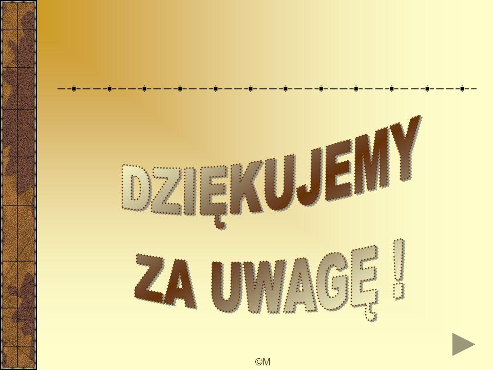 ©M Autorzy Paweł Woźniak III a.g Marcin Łączny III a.g