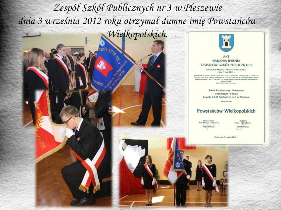 Zespół Szkół Publicznych nr 3 w Pleszewie dnia 3 września 2012 roku otrzymał dumne imię Powstańców Wielkopolskich.