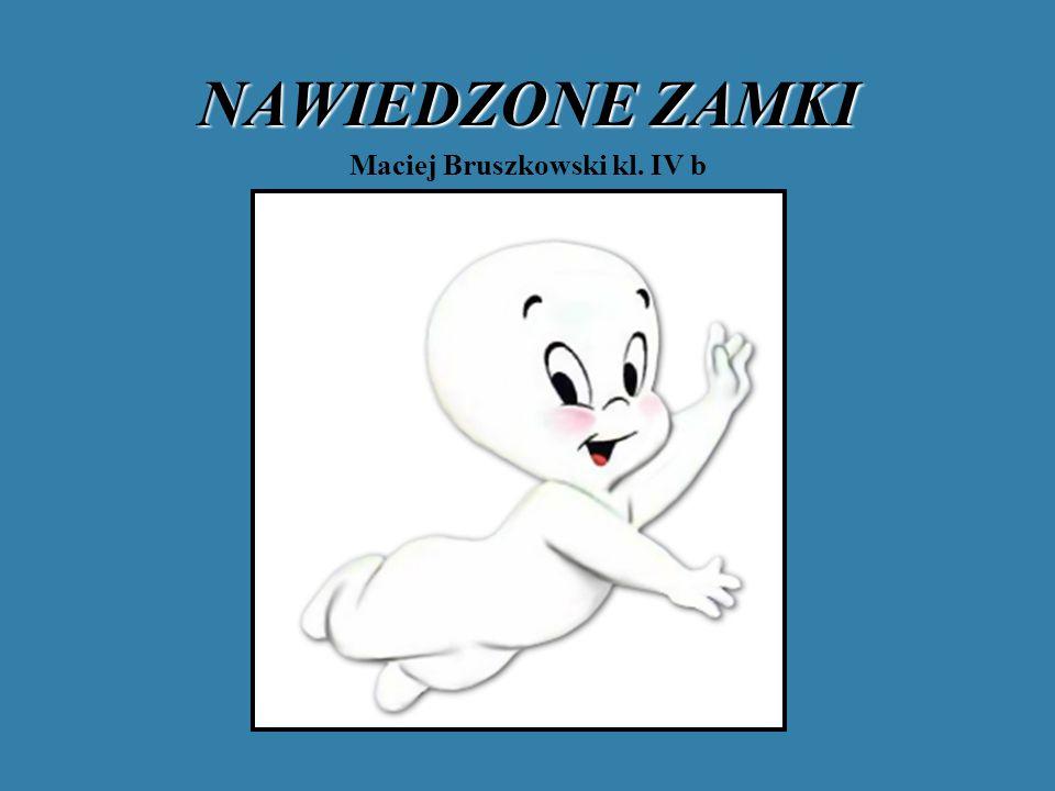 ZAMEK W OGRODZIEŃCU czarny pies Najlepiej znaną zjawą w Polsce jest czarny pies z Ogrodzieńca.