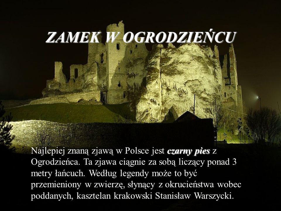 ZAMEK W OGRODZIEŃCU czarny pies Najlepiej znaną zjawą w Polsce jest czarny pies z Ogrodzieńca. Ta zjawa ciągnie za sobą liczący ponad 3 metry łańcuch.