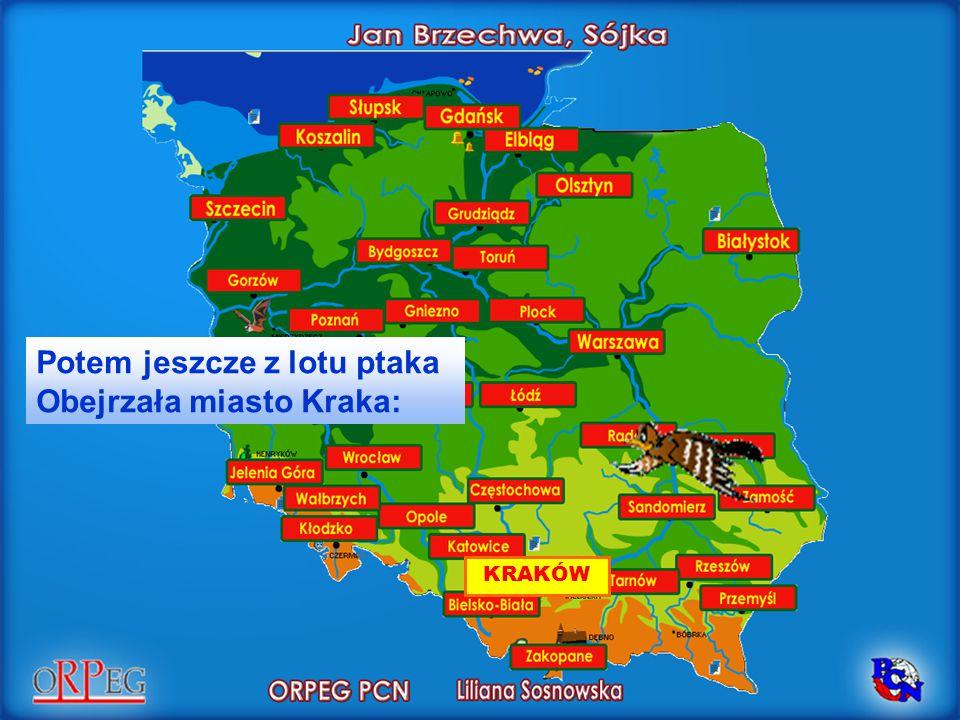 KRAKÓW Potem jeszcze z lotu ptaka Obejrzała miasto Kraka:
