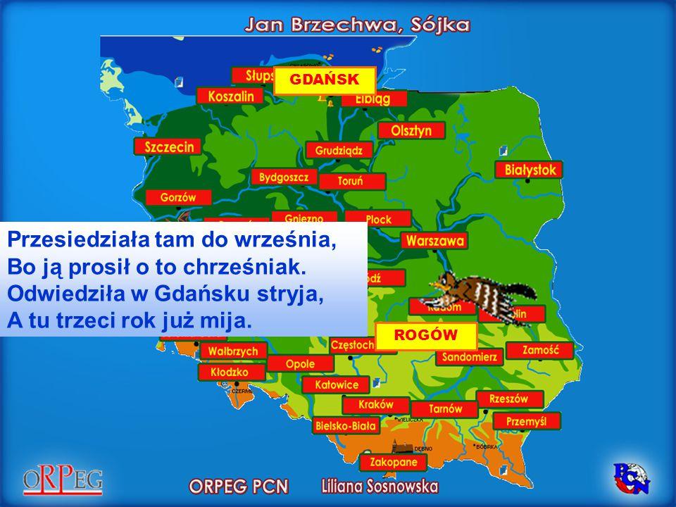 Przesiedziała tam do września, Bo ją prosił o to chrześniak. Odwiedziła w Gdańsku stryja, A tu trzeci rok już mija. GDAŃSK