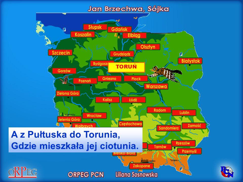 TORUŃ A z Pułtuska do Torunia, Gdzie mieszkała jej ciotunia.