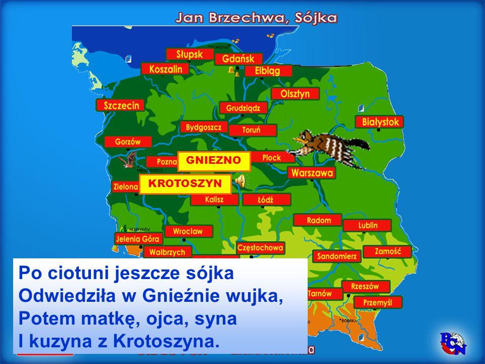 GNIEZNO Po ciotuni jeszcze sójka Odwiedziła w Gnieźnie wujka, Potem matkę, ojca, syna I kuzyna z Krotoszyna. KROTOSZYN