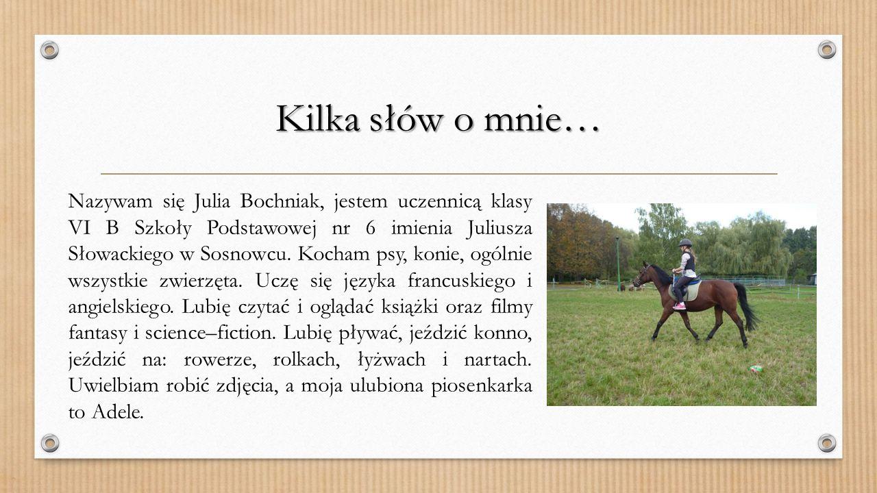 Moja Moja Wymarzona szkoła Autor: Julia Bochniak kl.VI B SP6 im. Juliusza Słowackiego w Sosnowcu Opiekun: Aneta Miodek