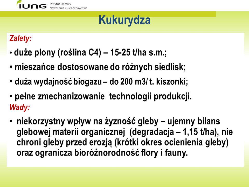 Kukurydza Zalety: duże plony (roślina C4) – 15-25 t/ha s.m.; mieszańce dostosowane do różnych siedlisk; duża wydajność biogazu – do 200 m3/ t. kiszonk