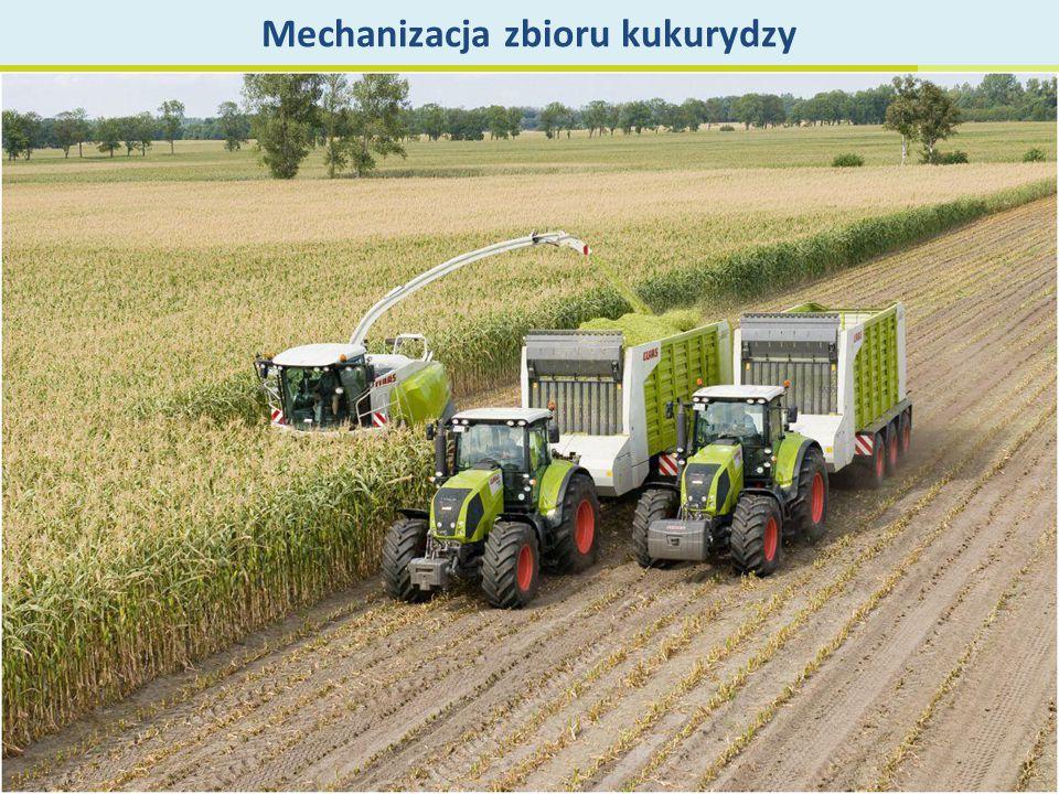 Mechanizacja zbioru kukurydzy