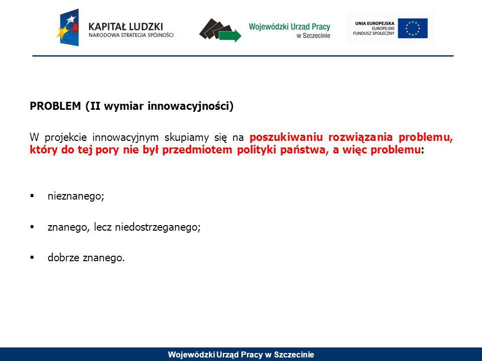 Wojewódzki Urząd Pracy w Szczecinie PROBLEM (II wymiar innowacyjności) W projekcie innowacyjnym skupiamy się na poszukiwaniu rozwiązania problemu, który do tej pory nie był przedmiotem polityki państwa, a więc problemu:  nieznanego;  znanego, lecz niedostrzeganego;  dobrze znanego.