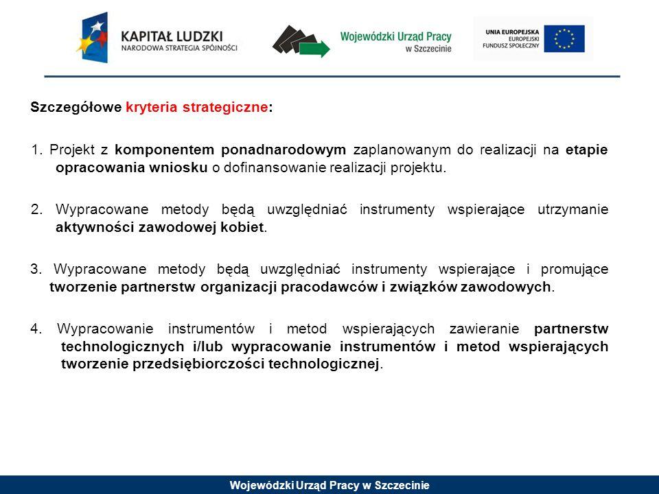 Wojewódzki Urząd Pracy w Szczecinie Szczegółowe kryteria strategiczne: 1.