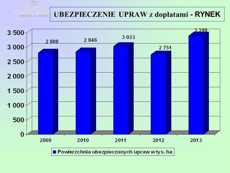  porozumienie koasekuracyjne  sprawozdawczość  1 stycznia 2015r.