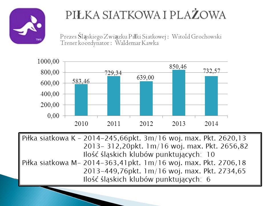 Piłka siatkowa K – 2014-245,66pkt. 3m/16 woj. max.