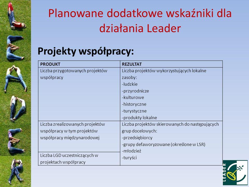 Planowane dodatkowe wskaźniki dla działania Leader Projekty współpracy: PRODUKTREZULTAT Liczba przygotowanych projektów współpracy Liczba projektów wykorzystujących lokalne zasoby: -ludzkie -przyrodnicze -kulturowe -historyczne -turystyczne -produkty lokalne Liczba zrealizowanych projektów współpracy w tym projektów współpracy międzynarodowej Liczba projektów skierowanych do następujących grup docelowych: -przedsiębiorcy -grupy defaworyzowane (określone w LSR) -młodzież -turyści Liczba LGD uczestniczących w projektach współpracy