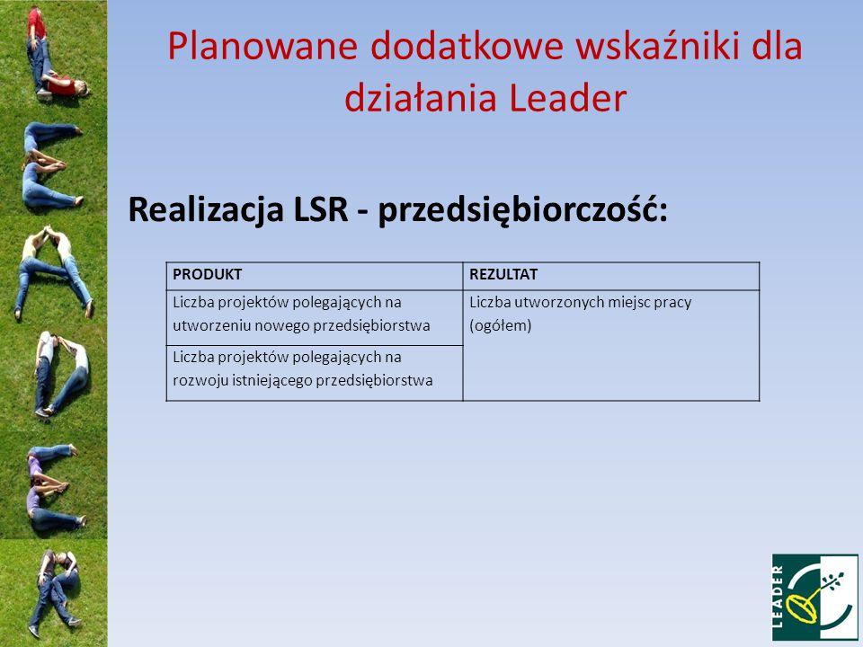 Planowane dodatkowe wskaźniki dla działania Leader Realizacja LSR - przedsiębiorczość: PRODUKTREZULTAT Liczba projektów polegających na utworzeniu nowego przedsiębiorstwa Liczba utworzonych miejsc pracy (ogółem) Liczba projektów polegających na rozwoju istniejącego przedsiębiorstwa
