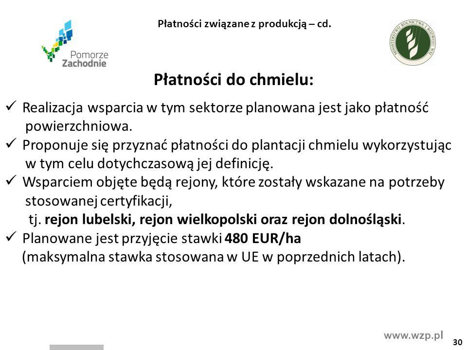www.wzp.p l Płatności do chmielu: Realizacja wsparcia w tym sektorze planowana jest jako płatność powierzchniowa. Proponuje się przyznać płatności do