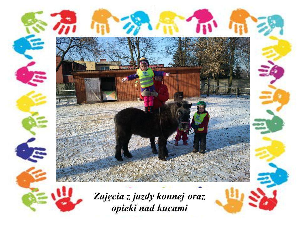 Zajęcia z jazdy konnej oraz opieki nad kucami