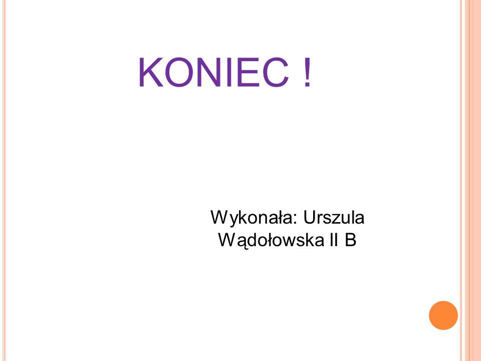 KONIEC ! Wykonała: Urszula Wądołowska II B