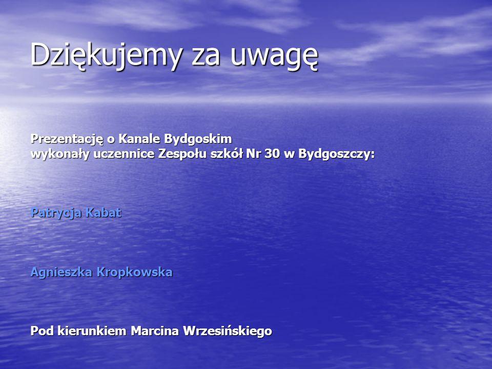 Dziękujemy za uwagę Prezentację o Kanale Bydgoskim wykonały uczennice Zespołu szkół Nr 30 w Bydgoszczy: Patrycja Kabat Agnieszka Kropkowska Pod kierun