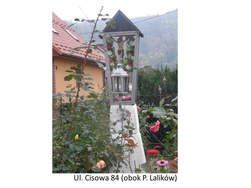 Ul. Cisowa 84 (obok P. Lalików)