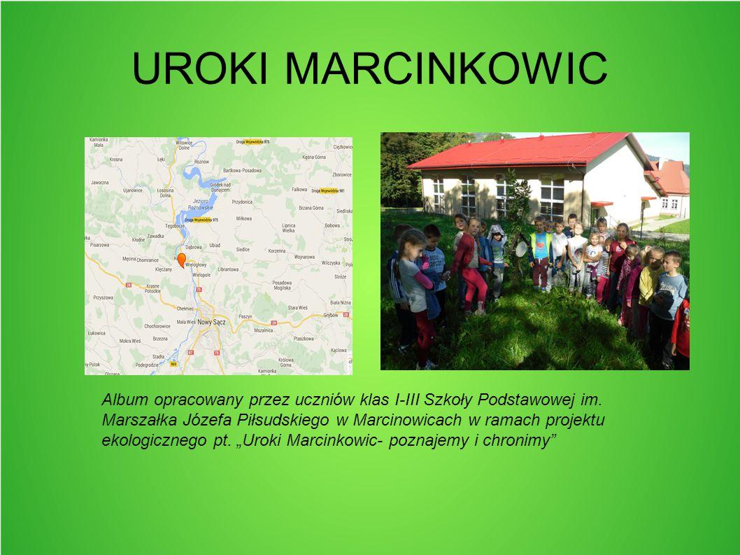 POŁOŻENIE Wieś Marcinkowice położona jest na pograniczu Beskidu Wyspowego i Podgórza Rożnowskiego, w rozwidleniu rzek Dunajec i Smolnik, około 8 kilometrów od Nowego Sącza.