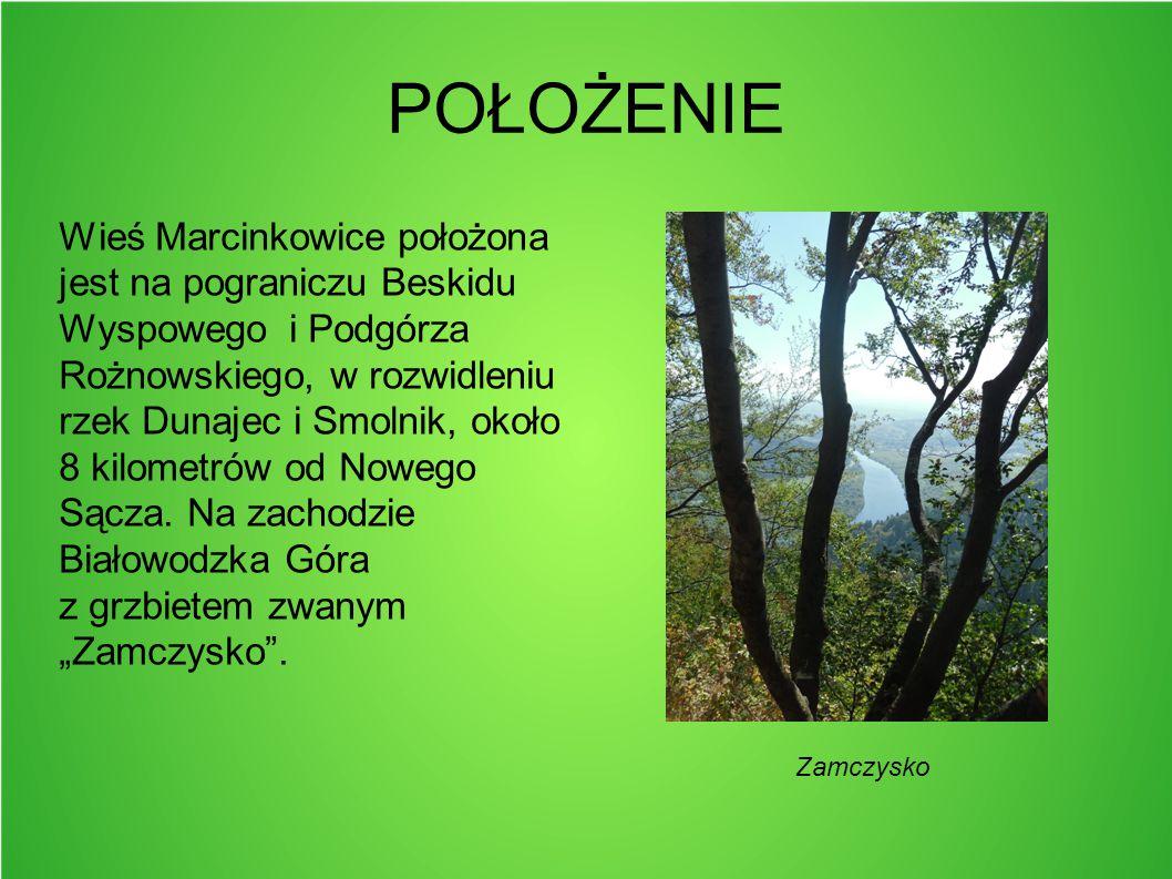POŁOŻENIE Wieś Marcinkowice położona jest na pograniczu Beskidu Wyspowego i Podgórza Rożnowskiego, w rozwidleniu rzek Dunajec i Smolnik, około 8 kilom