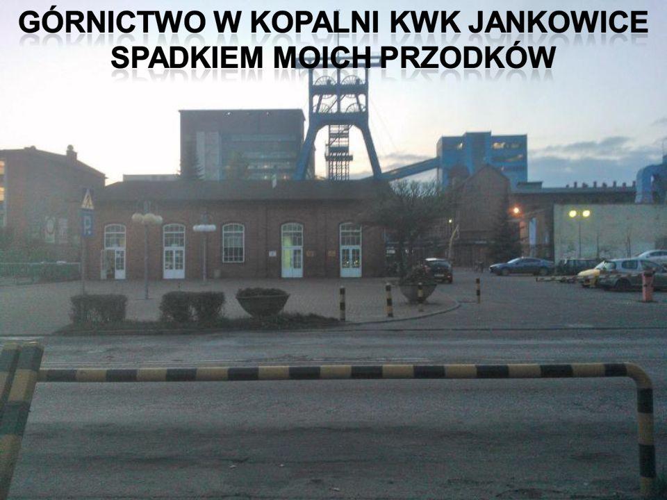 Budowę kopalni rozpoczęto w latach 1913-1915.