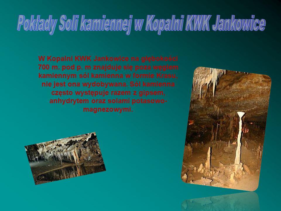 W Kopalni KWK Jankowice na głębokości 700 m. pod p. m znajduje się poza węglem kamiennym sól kamienna w formie Krasu, nie jest ona wydobywana. Sól kam