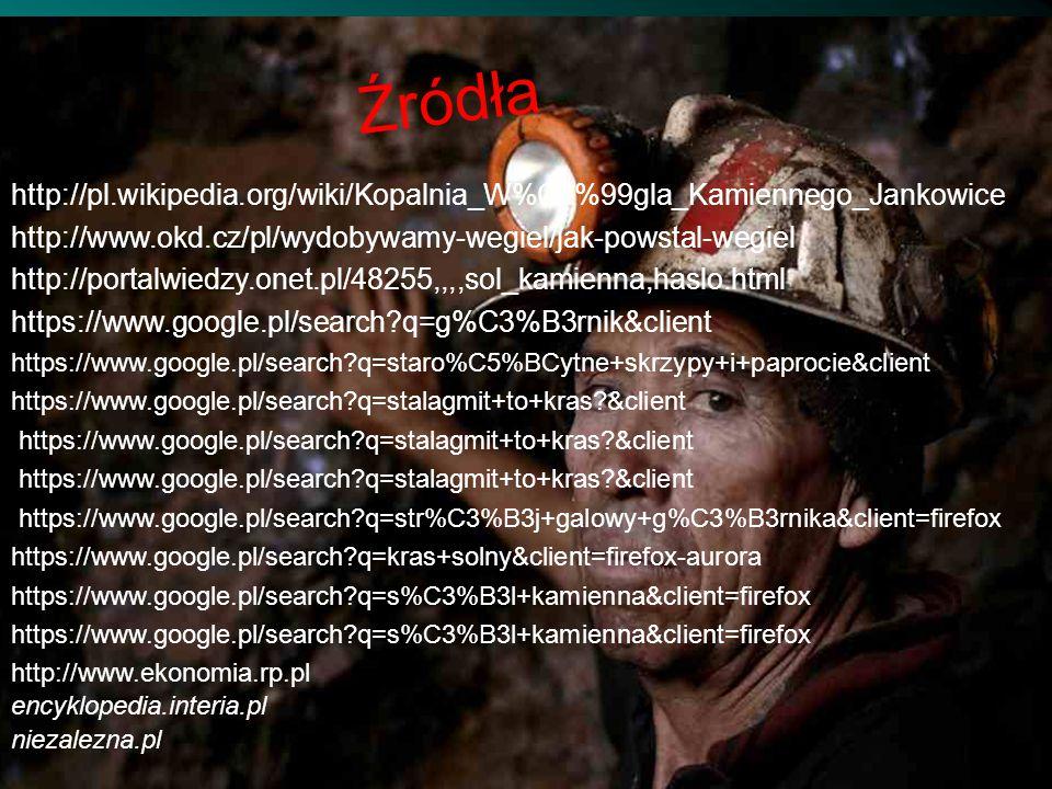 http://pl.wikipedia.org/wiki/Kopalnia_W%C4%99gla_Kamiennego_Jankowice http://www.okd.cz/pl/wydobywamy-wegiel/jak-powstal-wegiel http://portalwiedzy.on