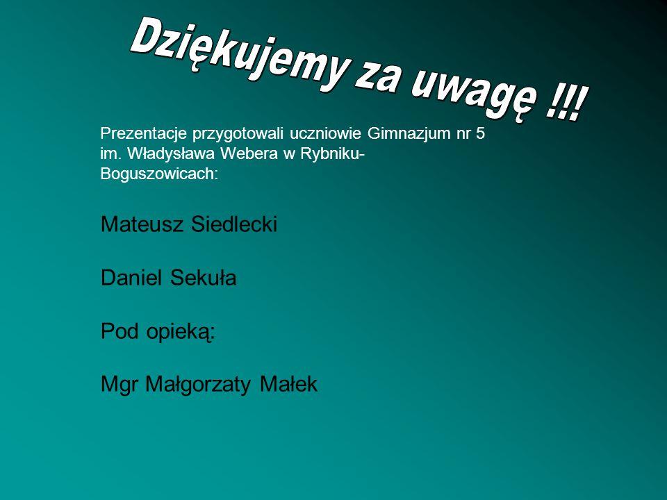 Prezentacje przygotowali uczniowie Gimnazjum nr 5 im. Władysława Webera w Rybniku- Boguszowicach: Mateusz Siedlecki Daniel Sekuła Pod opieką: Mgr Małg